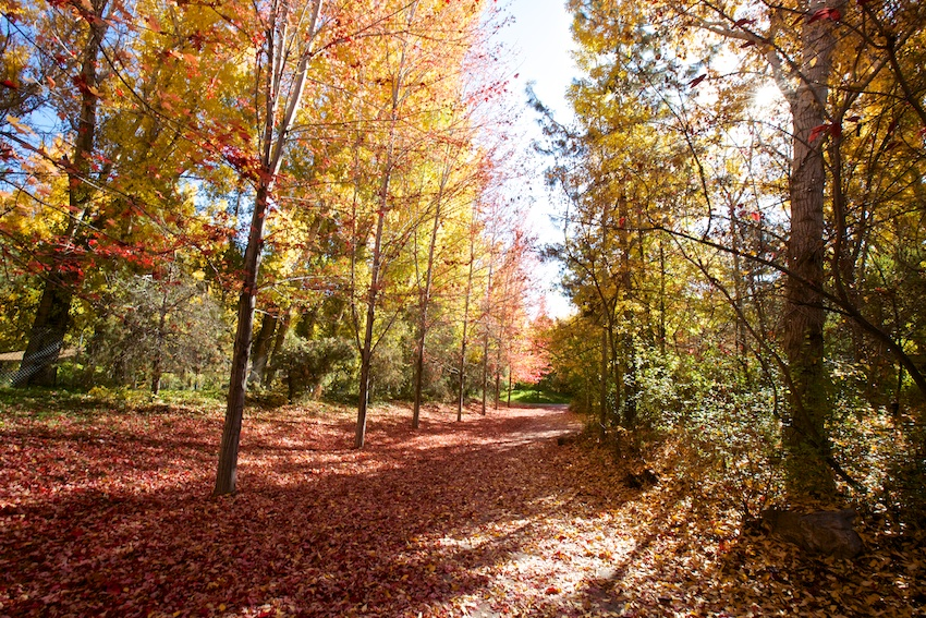 Lagoon Trail Healthy Trail Guides Intermountain Live Well