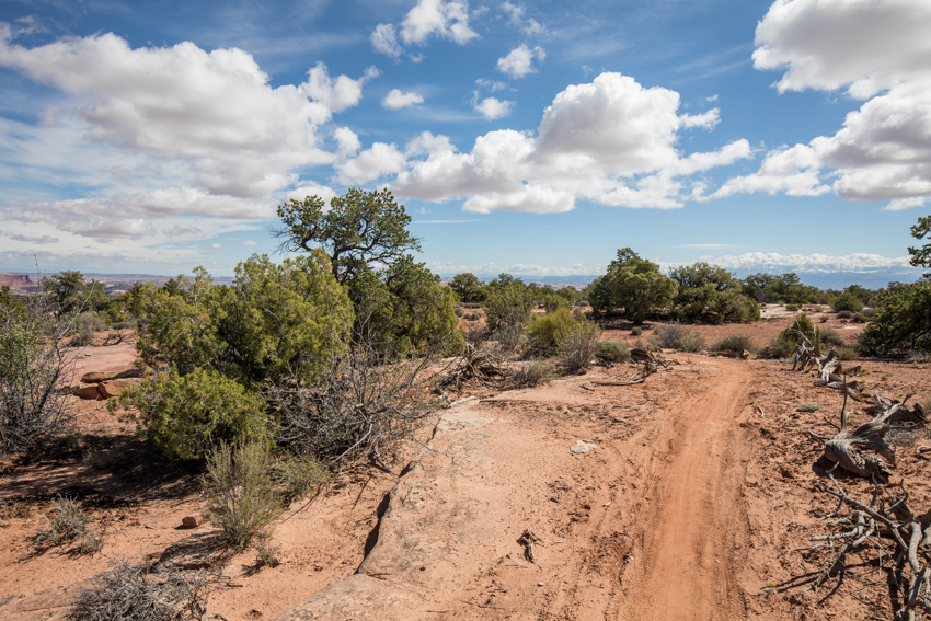 Mustang Loop Trail  a1da843d9d