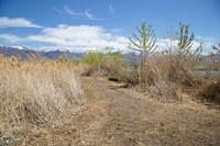 The unimproved trail on the north side of Bountiful Lake