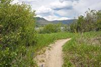 The Pineview West Trail