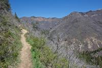 Great views of Millcreek Canyon in an open section of the trail