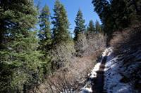 Snow patches linger well into spring near the top of the hike