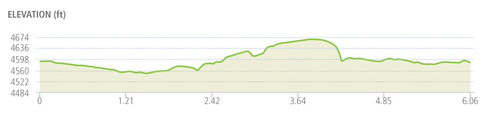 Race for Red 10K Elevation Map