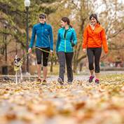 Three young women and a dog are walking together down a leafy sidewalk