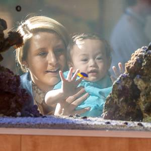 woman-and-baby-looking-at-aquarium