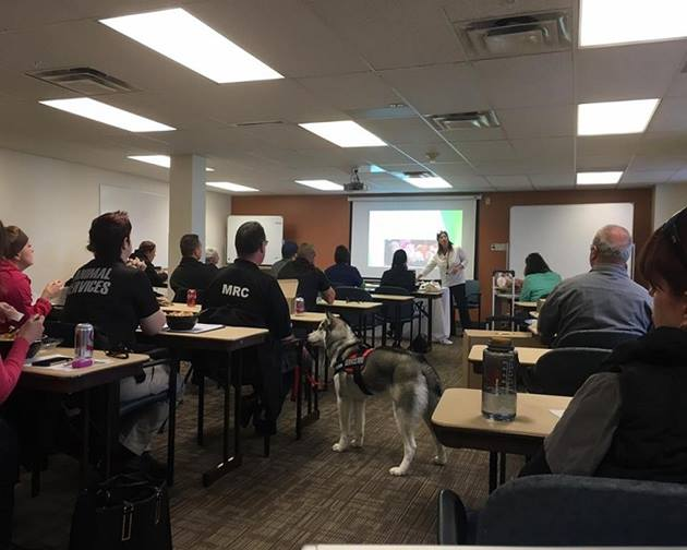 2016-Lunch-and-Learn-1