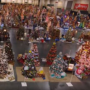Festival of Trees TY Video Still 2018 sqweb