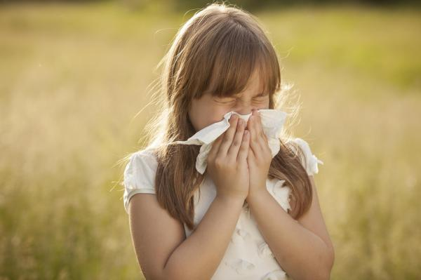 Allergy Season: Dr  Silge Answers Your Questions