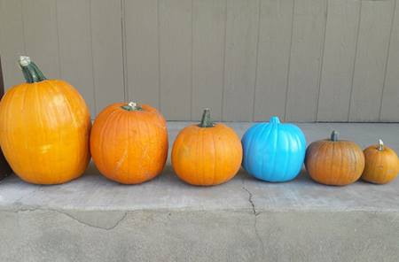 teal-pumpkin-food-allergy-halloween-Utah copy