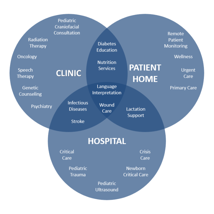 Intermountain U0026 39 S Approach To Supporting Services Through Telehealth Technology