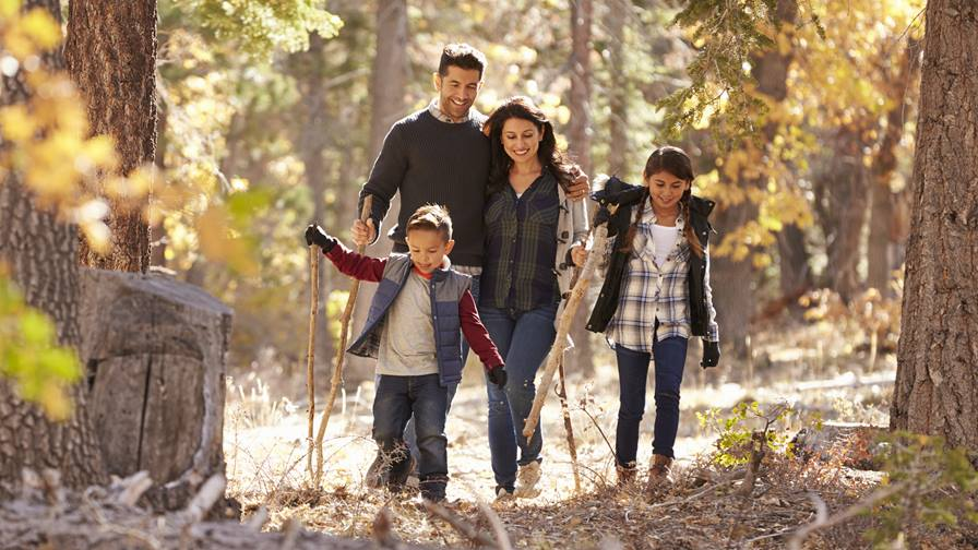 Creative ways to stay active with your family this fall