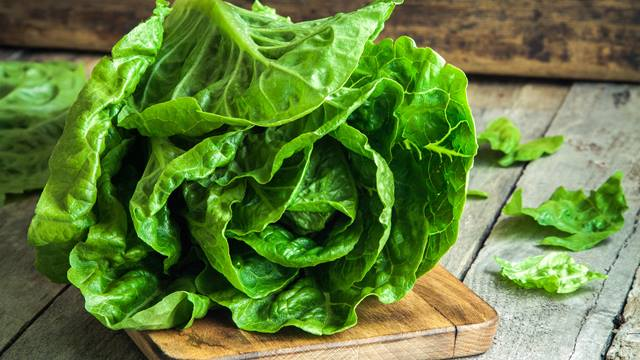 Romaine lettuce recall and E coli