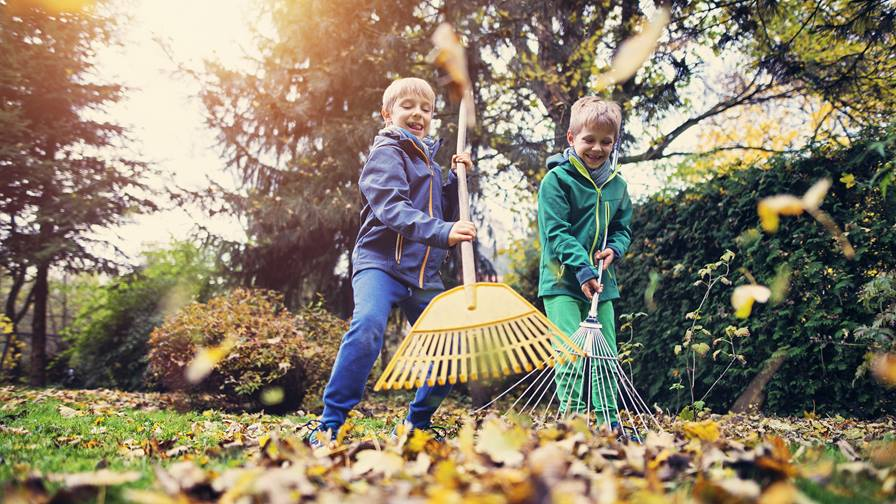 Fall Yard Cleanup Ideas for the Whole Family