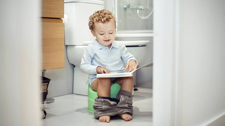 When should I potty train my toddler
