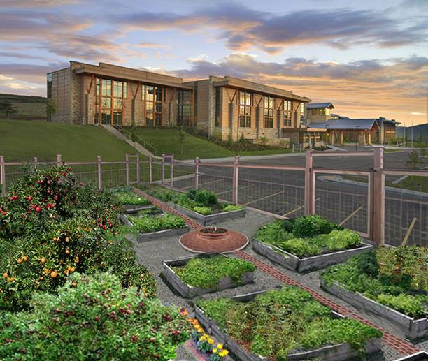 Calling all green thumbs to the new community garden for Garden design 1900